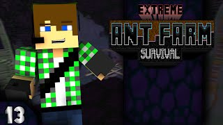 Extreme Ant Farm Survival E13 - L