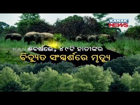 Dharmendra Pradhan Criticise Odisha Govt...