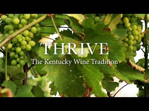 Thrive: The Kentucky Wine Tradition (Full Documentary)