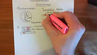 Chloramphenicol Part 1
