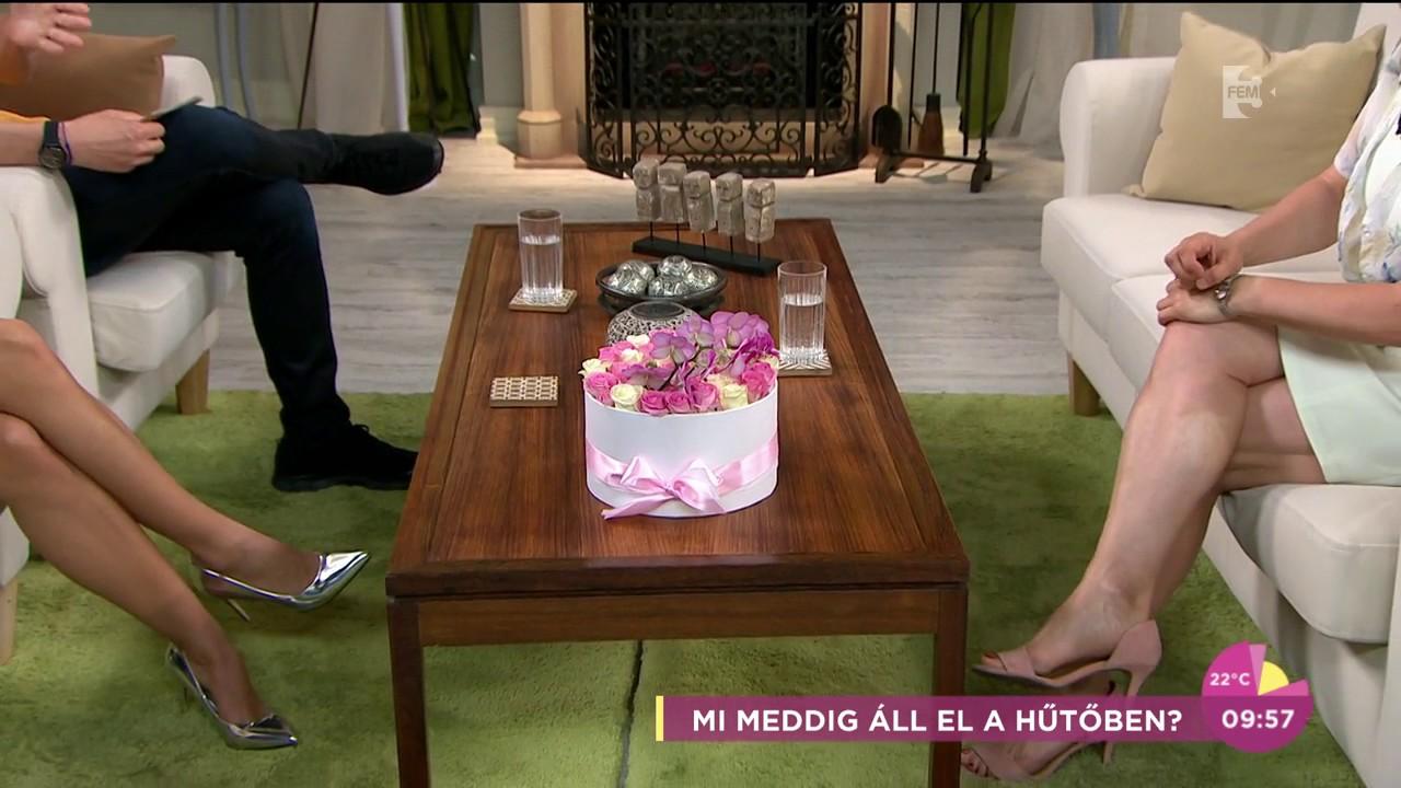 trichinella asztal galandfereg lovaknal
