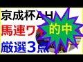 ★的中!【競馬予想】2018京成杯オータムハンデ~1番人気不振データでロジクライも怪…
