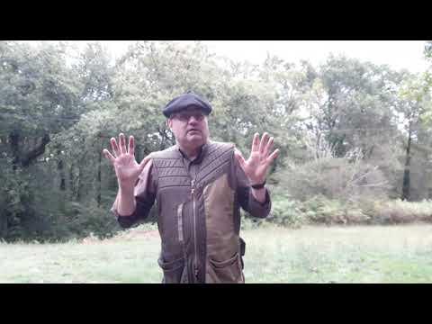 palombe.org Vendre des palombes n'est pas dans notre éthique de chasse.