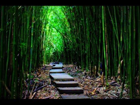 Most Breathtaking Spots In Hawaii HD 2016 HD