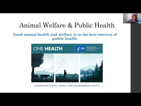 Video: Human-Animal Interactions and COVID-19