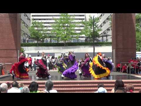Oasis & Sangria Dancers, 2016 Rossini Festival, Sony Camcorder