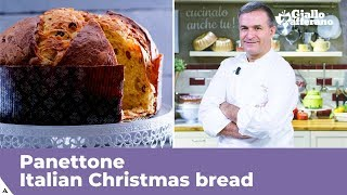 PANETTONE (Italian Christmas bread: traditional recipe)