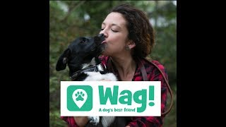 Check out my video discussing my experience with Wag! RIGHT NOW GET...