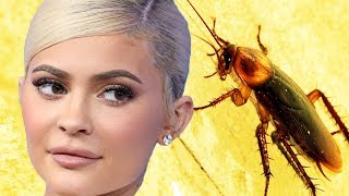 Kylie Jenner Reveals Cockroach On Dream Kardashian's Birthday Cake | Hollywoodlife
