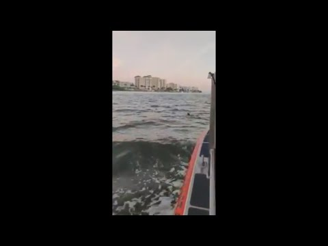 Pet Central - The Coast Guard gets a report of a dog lost in the waters off Fort Myers