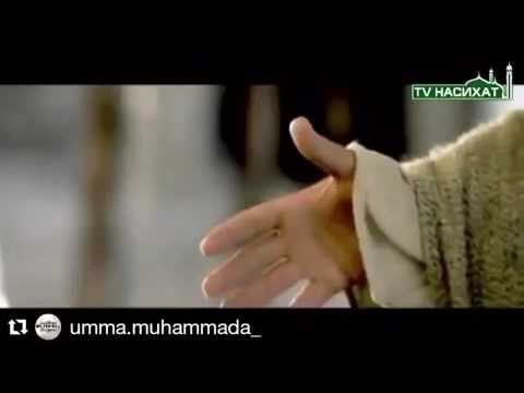 знакомства мусульман сунна