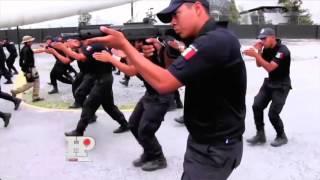 PF busca personal para integrarse a la Seguridad Regional perfil prevención: Gerardo Vázquez