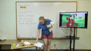 Cubbies: HoneyComb Bear Hug 12 - Lesson