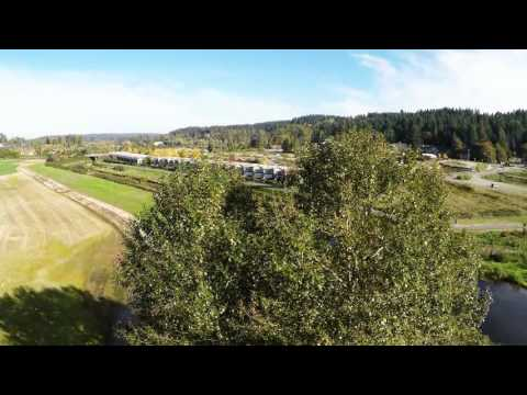 Sammamish River (Slough) and tree flyover Solo Drone