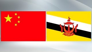 President Xi attends welcome ceremony hosted by Brunei