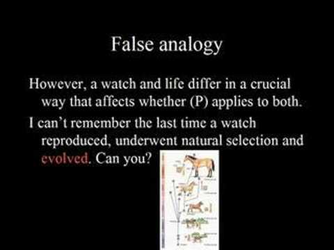 Fallacy Of Id False Analogy Youtube