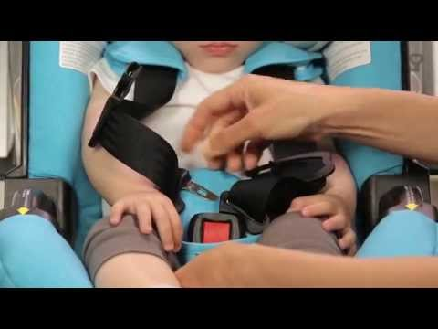 Fastening the harness - US Standard