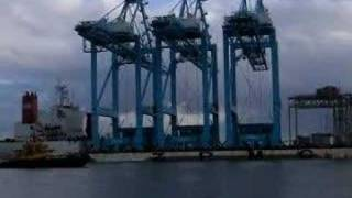 Delivery of 3 new ZPMC post panamax Cranes to APM(1)
