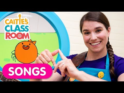 The Itsy Bitsy Spider | Nursery Rhymes From Caitie's Classroom