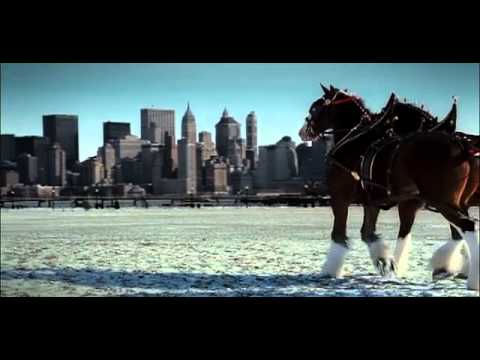 Budweiser - Respect (2002, USA)