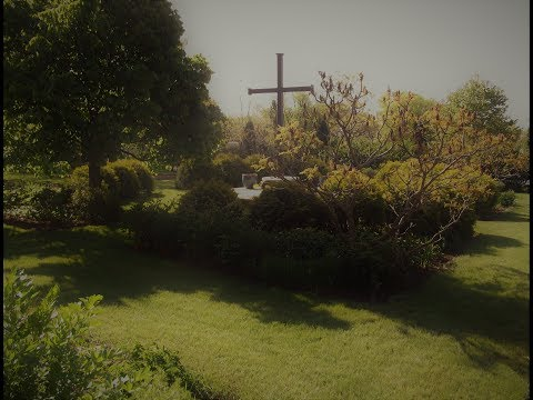 Carmelite Discernment an Introduction