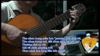 Cánh Hoa Yêu - Guitar Solo [Hoàng Trọng]