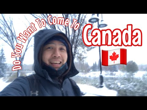 Things To Consider If You Want To Come To Canada | My Honest Opinion | Calgary, Alberta, Canada
