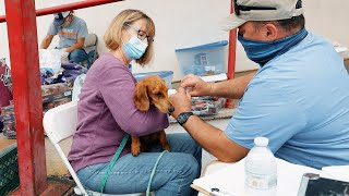 Mobile Community Medicine Keeps Pets Healthy and Homebound!
