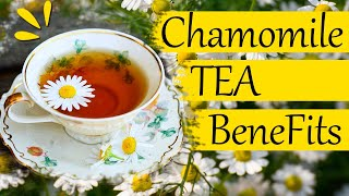 Top 10 Benefits of Chamomile Tea You Never Knew About.