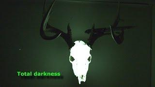 How To make a Glowing Deer Skull