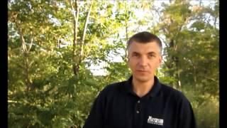 видео Где заказать аудит безопасности бизнеса