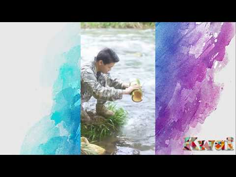 WILD LIFE - HOW TO COOK (COOK SKILLS) - INDIA CURRY SHRIMPS IN FRESH BAMBOO TUBE