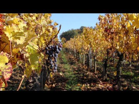 Odkryj Bordeaux z Ryanair