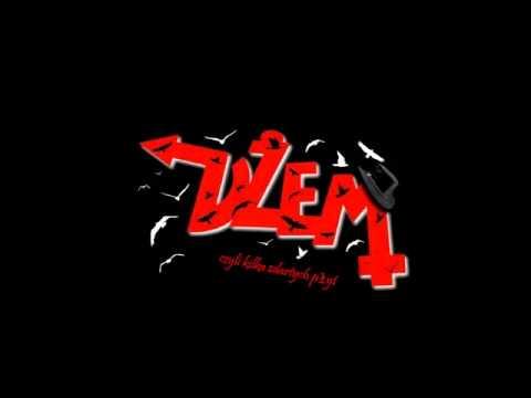 DŻEM - Detox (Przystanek Woodstock 2009)