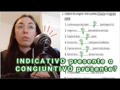 EASY Italian grammar exercise