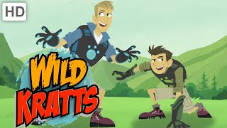 Wild Kratts - Theme Song