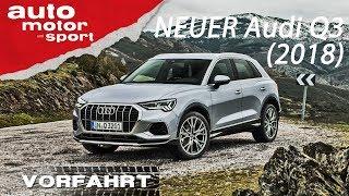 NEU Audi Q3 (2018): Der bessere Tiguan? - Vorfahrt (Review) | AUTO MOTOR UND SPORT