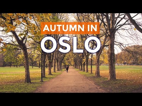 Sunny AUTUMN IN OSLO, Norway