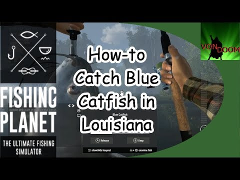 Fishing Planet: How-to Catch Blue Catfish in Louisiana