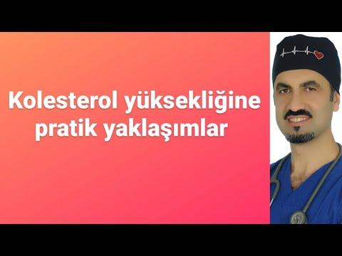 KOLESTEROL YÜKSEKLİĞİNE PRATİK YAKLAŞIM - PROF DR AHMET KARABULUT