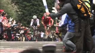 ジャパンカップ2010【シクロチャンネル】