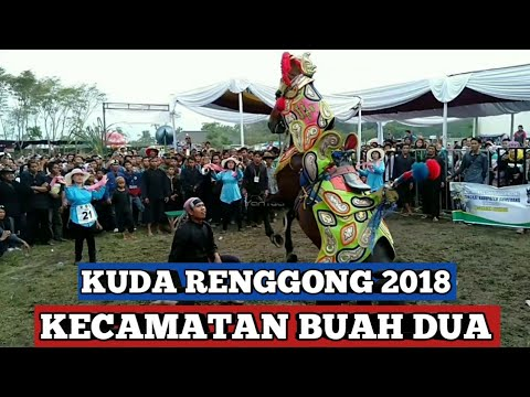 Kuda renggong - Festival kuda renggong 2018