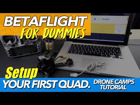 BETAFLIGHT SETUP FOR DUMMIES