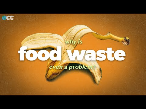 Food Waste causes Climate Change. Here's how we stop it.