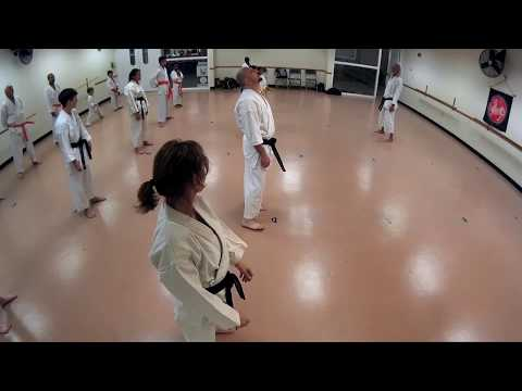 Karate Kihon Drills
