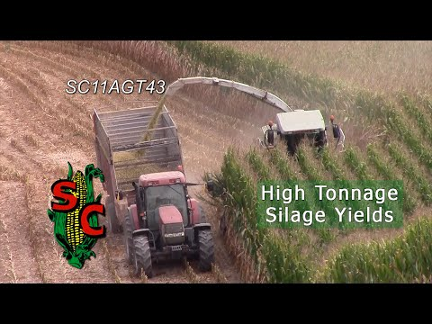 High Tonnage Silage Yields