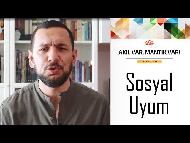 Sosyal Uyum | AKIL VAR MANTIK VAR (Sosyal Etki Dizisi #2)