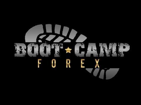 Najlepsi brokerzy Forex
