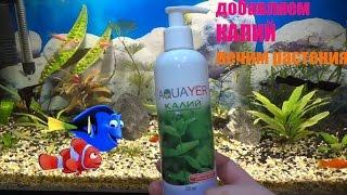 удобрения КАЛИЕМ в аквариумах. Болезнь растений. Способ лечения. lack of potassium in the aquarium
