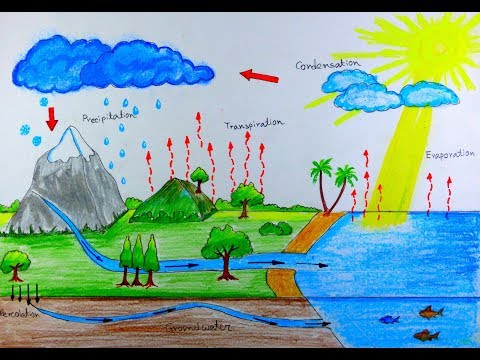 How to draw Water Cycle.
